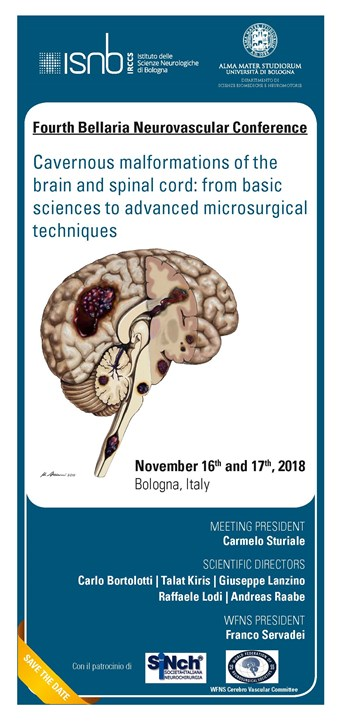 Fourth Bellaria Neurovascular Conference