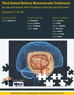 Third Annual Bellaria Neurovascular Conference